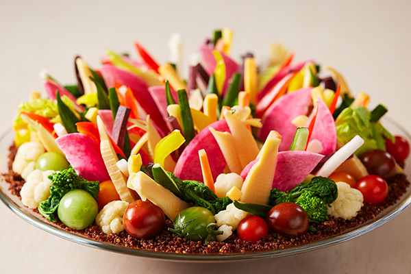 Vegetable garden salad